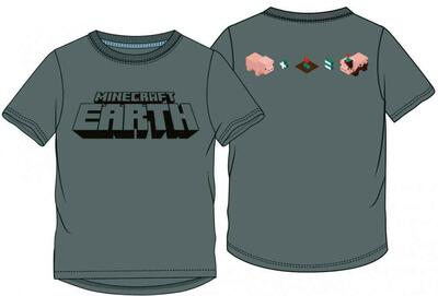 Minecraft Earth t-shirt grå