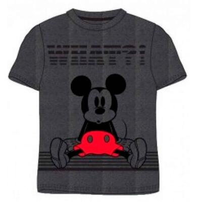 Mickey Mouse T-Shirt Grå