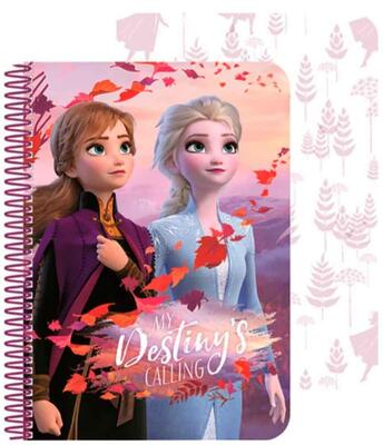 Disney Frost Notesbog A5 Destiny