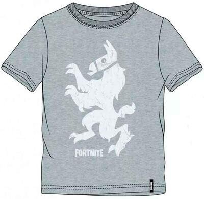 Fortnite Kortærmet Grå T-Shirt